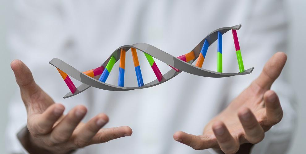 Badania materiału genetycznego celem ustalenia ojcostwa oraz pokrewieństwa